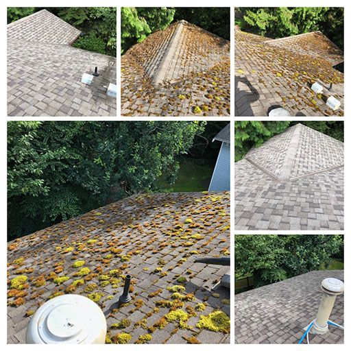 roof washing surrey